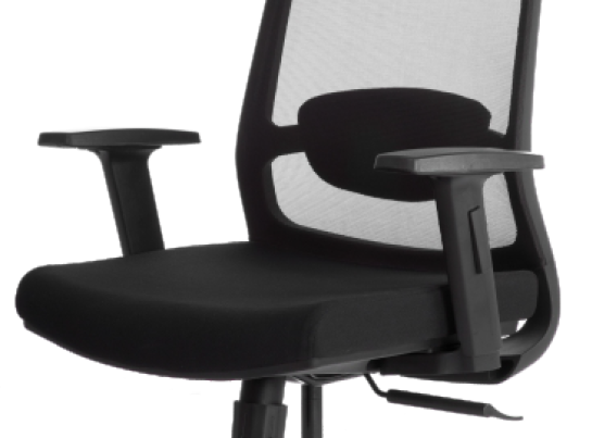 affordable office chairs - amul polycure
